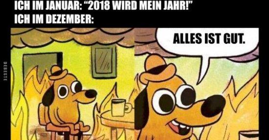 Ich im Januar: 2018 wird MEIN Jahr!   Lustige Bilder ...
