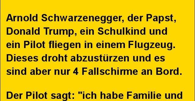 Arnold Schwarzenegger, der Papst, Donald Trump.. | Lustige Bilder ...
