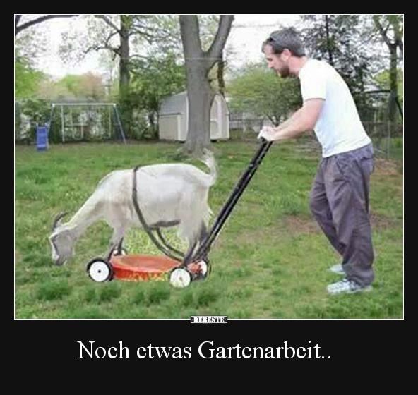 Noch etwas Gartenarbeit.. | Lustige Bilder, Sprüche, Witze, echt