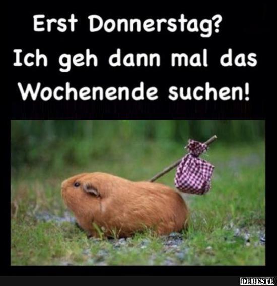 Erst Donnerstag Lustige Bilder Sprüche Witze Echt Lustig