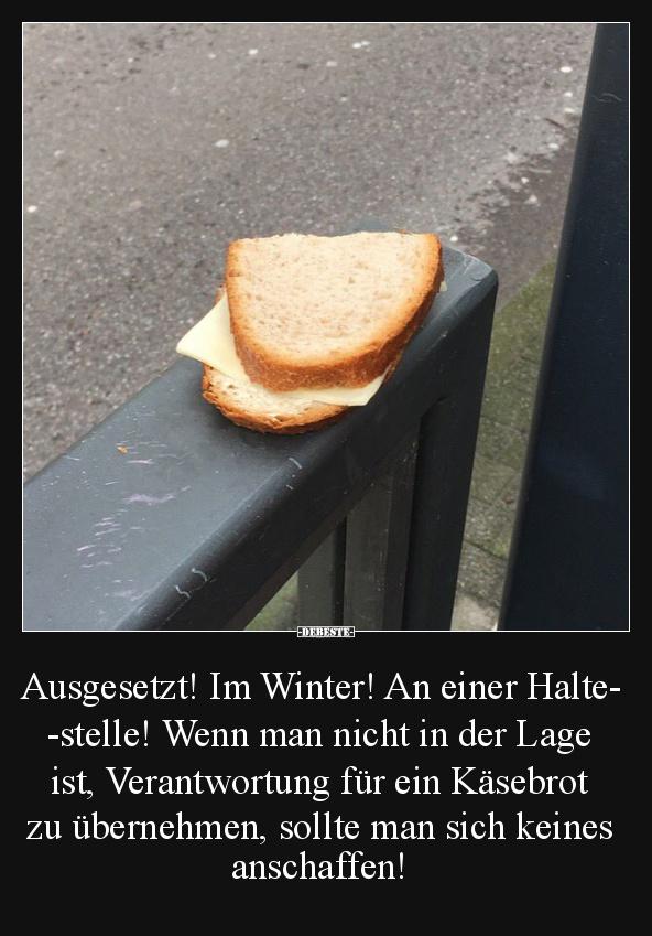 winter lustige bilder