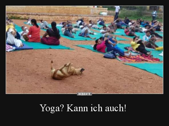 Yoga Kann Ich Auch Lustige Bilder Spruche Witze Echt Lustig