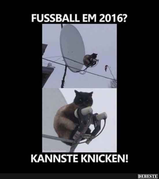 fußbal spiele