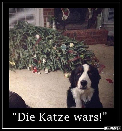 Lustige Tannenbaum Sprüche.Weihnachtsbaum Lustige Bilder Sprüche Witze Echt Lustig