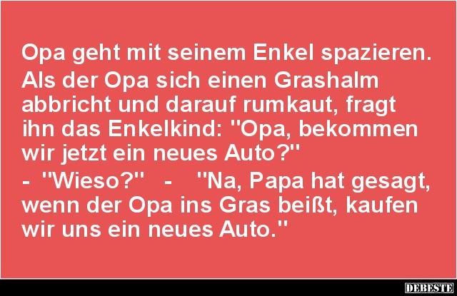 Opa Geht Mit Seinem Enkel Spazieren.. | Lustige Bilder, Sprüche, Witze,  Echt Lustig