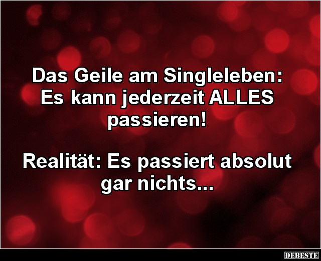 sprüche über das single leben Das Geile am Singleleben: Es kann jederzeit ALLES passieren  sprüche über das single leben