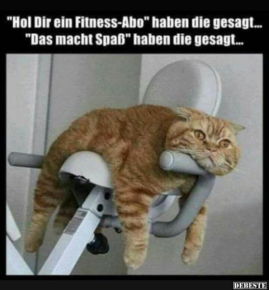 fitness sprüche lustig Hol Dir ein Fitness Abo.. | Lustige Bilder, Sprüche, Witze, echt  fitness sprüche lustig