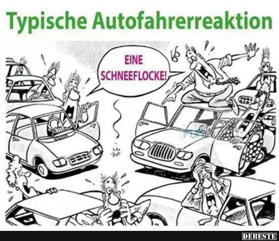Typische Autofahrerreaktion..   Lustige Bilder, Sprüche ...