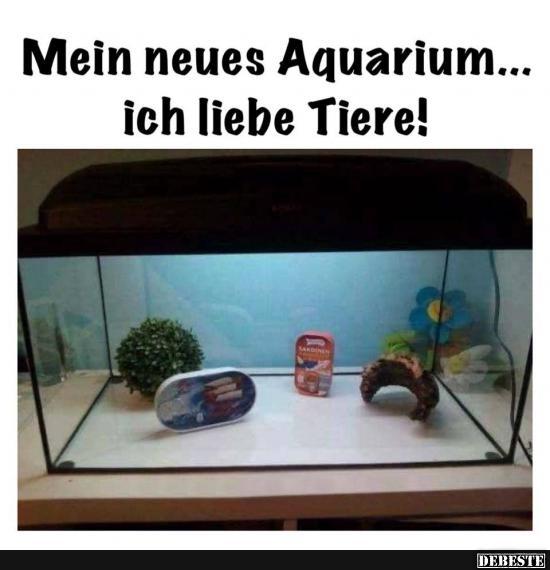 Mein Neues Aquarium Ich Liebe Tiere Lustige Bilder Spruche