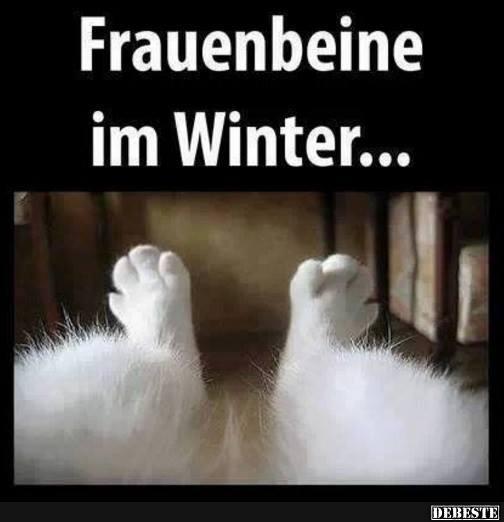 lustige sprüche winter Frauenbeine im Winter.. | Lustige Bilder, Sprüche, Witze, echt lustig lustige sprüche winter