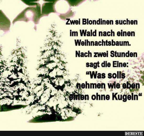 Lustige Tannenbaum Sprüche.Zwei Blondinen Suchen Im Wald Nach Einen Weihnachtsbaum Lustige