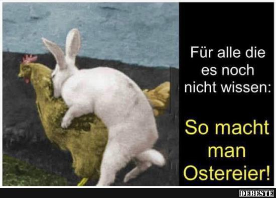 So Macht Man Osterier Lustige Bilder Spruche Witze Echt Lustig