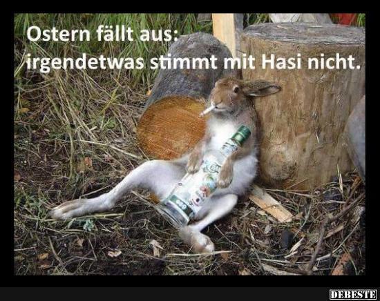 Ostern Fällt Aus Lustige Bilder Sprüche Witze Echt Lustig