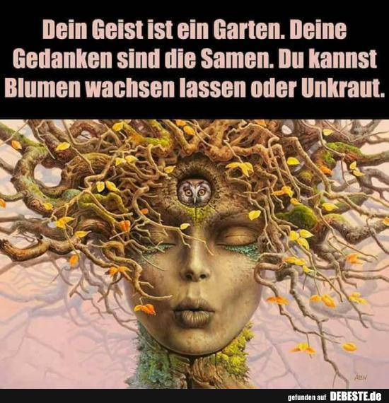 Dein Geist Ist Ein Garten Lustige Bilder Spruche Witze Echt