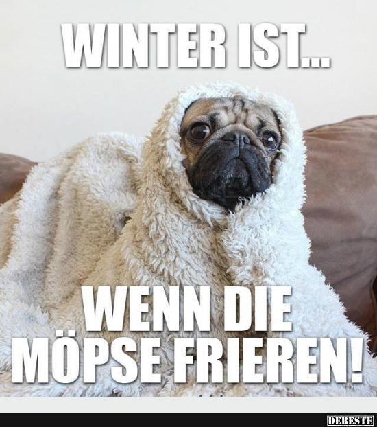 Winter ist.. | Lustige Bilder, Sprüche, Witze, echt lustig