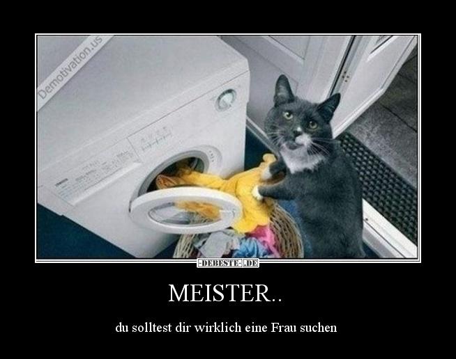MEISTER.. | Lustige Bilder, Sprüche, Witze, echt lustig