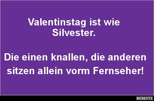 Valentinstag ist wie Silvester | Lustige Bilder, Sprüche, Witze ...