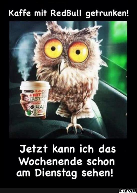 Kaffee Mit Redbull Getrunken Lustige Bilder Spruche Witze Echt