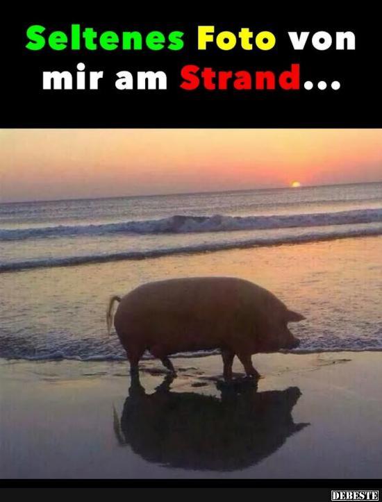 Seltenes Foto von mir am Strand..   Lustige Bilder