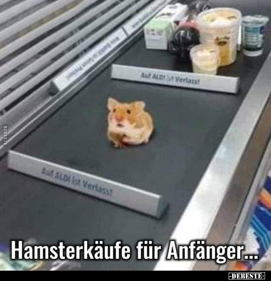 Hamsterkauf Lustig