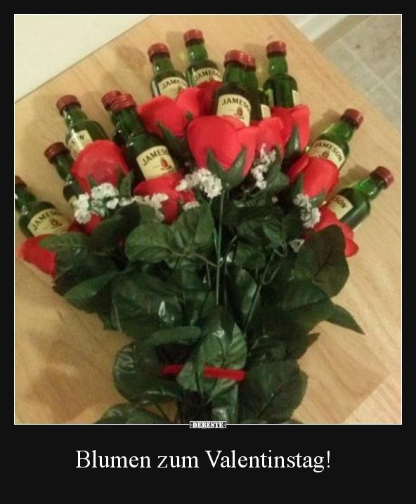 Blumen zum Valentinstag! | Lustige Bilder, Sprüche, Witze ...