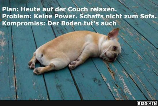 Plan Heute Auf Der Couch Relaxen Lustige Bilder Spruche Witze