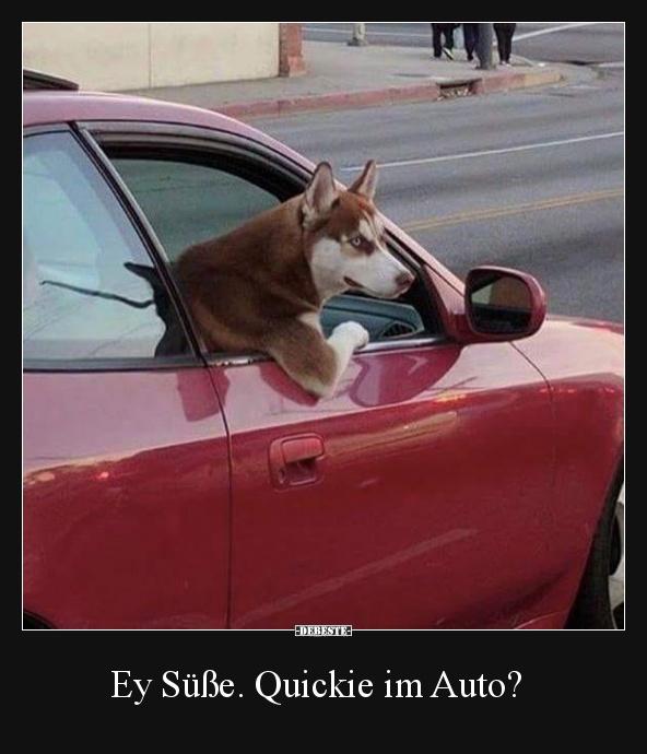 Quicky Im Auto