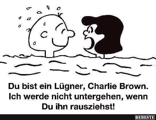 Du Bist Ein Lügner Charlie Brown Lustige Bilder Sprüche Witze