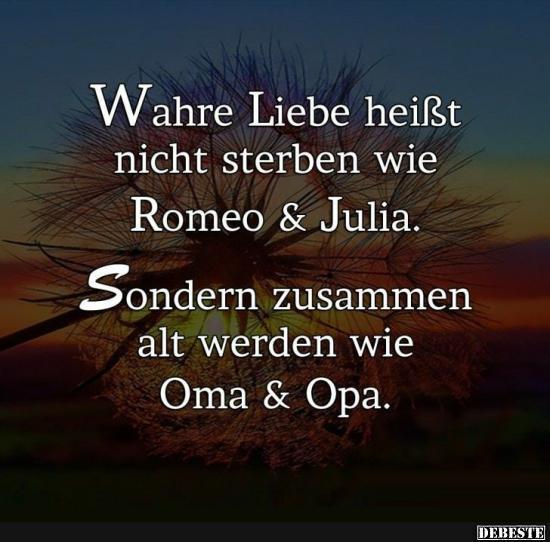 echte liebe sprüche Wahre Liebe heisst nicht sterben wie Romeo und Julia.. | Lustige  echte liebe sprüche