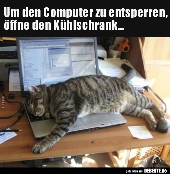 Um Den Computer Zu Entsperren Offne Den Kuhlschrank Lustige