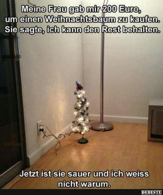 Weihnachtsbaum Kaufen Echt.Meine Frau Gab Mir 200 Euro Um Einen Weihnachtsbaum Zu Kaufen