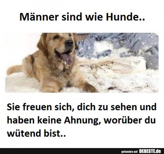 Lustige Hunde Bilder Mit Text