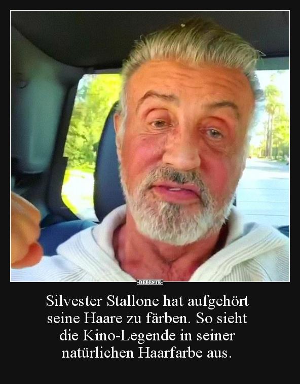 Bilder Silvester Lustig