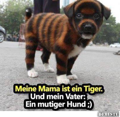 meine mama ist ein tiger und mein vater ein mutiger hund. Black Bedroom Furniture Sets. Home Design Ideas