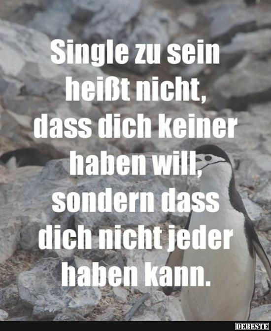 single sein sprüche Single zu sein heißt nicht dass dich keiner haben will.. | Lustige  single sein sprüche