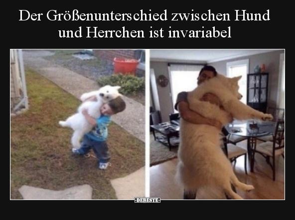 Der Größenunterschied Zwischen Hund Und Herrchen Ist Lustige