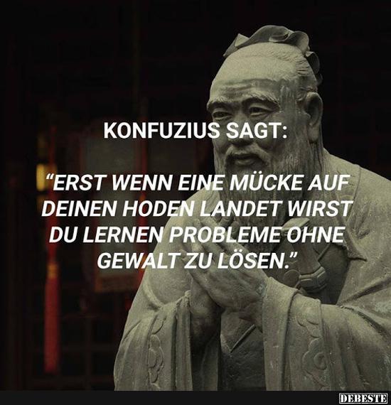 konfuzius sprüche Konfuzius sagt: Erst, wenn eine Mücke auf deinem Hoden.. | Lustige  konfuzius sprüche