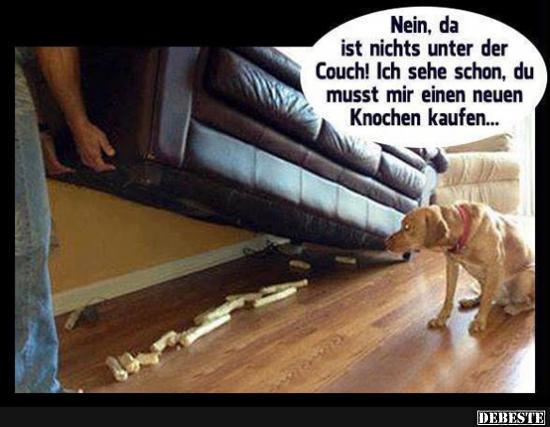 Nein  Da Ist Nichts Unter Der Couch