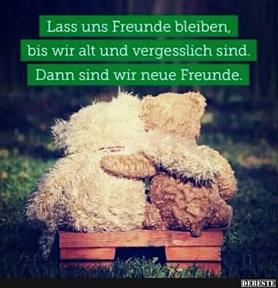 Lass uns Freunde bleiben.. | Lustige Bilder, Sprüche, Witze, echt