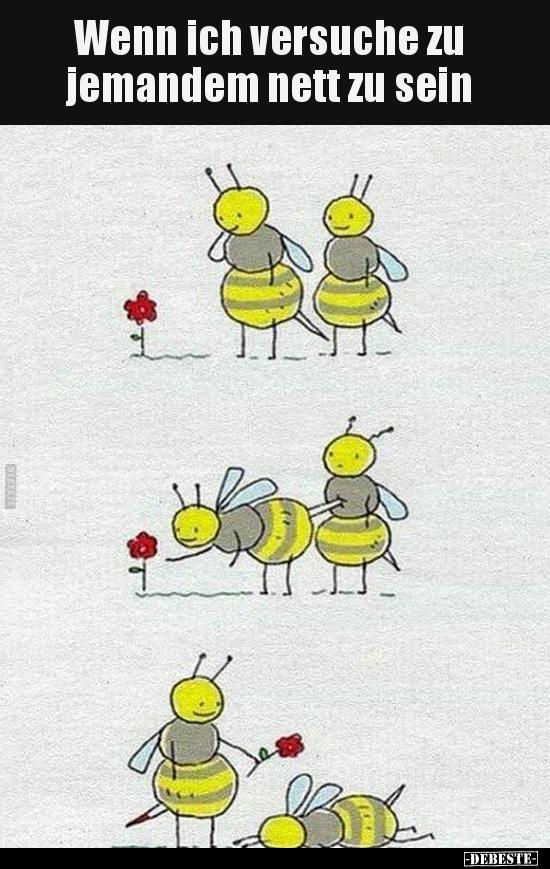 Wenn ich versuche zu jemandem nett zu sein.. | Lustige Bilder, Sprüche, Witze, echt lustig