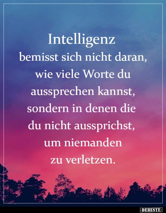 Intelligenz bemisst sich nicht daran, wie viele Worte du ...
