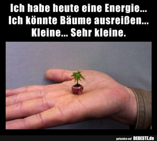 Ich Habe Heute Eine Energie Ich Könnte Bäume Ausreißen