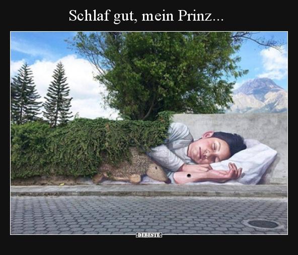 Schlaf Gut Mein Prinz Lustige Bilder Sprüche Witze