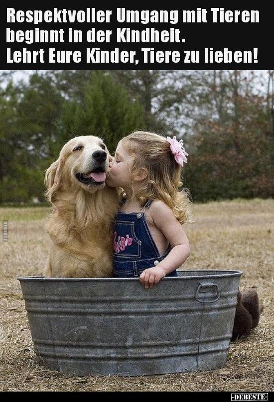 Respektvoller Umgang mit Tieren beginnt in der.. | Lustige ...