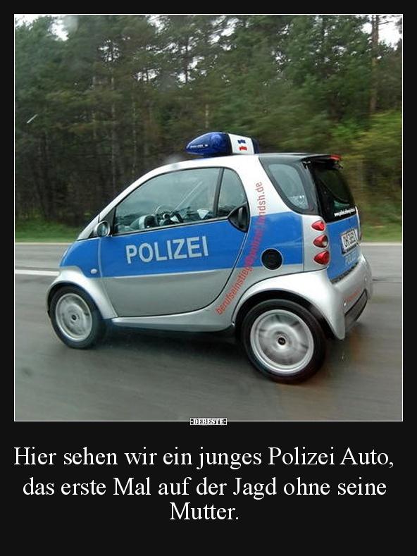 hier sehen wir ein junges polizei auto lustige bilder spr che witze echt lustig. Black Bedroom Furniture Sets. Home Design Ideas