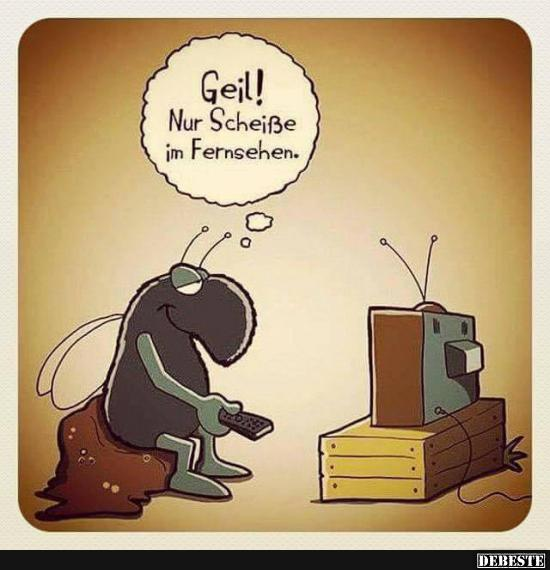 lustige bilder fernsehen