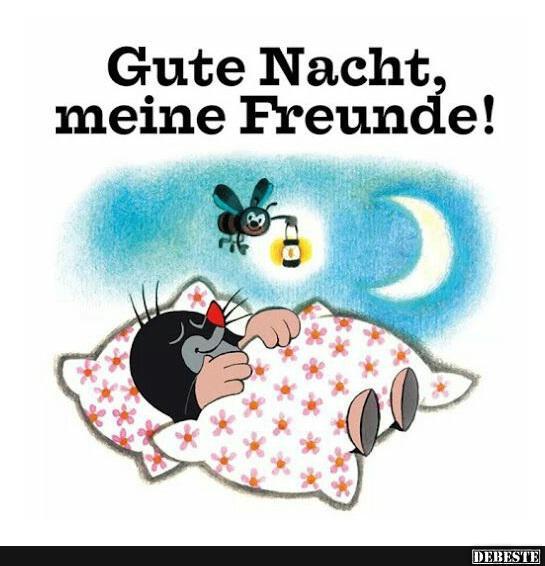 lustige guten abend sprüche Gute Nacht.. | Lustige Bilder, Sprüche, Witze, echt lustig lustige guten abend sprüche