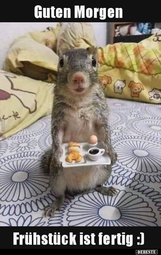 Guten Morgen Frühstück Ist Fertig Lustige Bilder