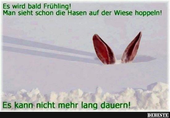 frühling sprüche lustig Es wird bald Frühling! | Lustige Bilder, Sprüche, Witze, echt lustig frühling sprüche lustig