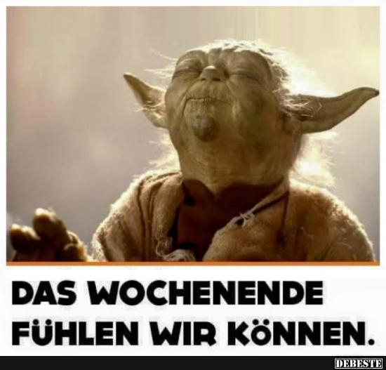 Yoda Spruche Lustig Marketingfactsupdates